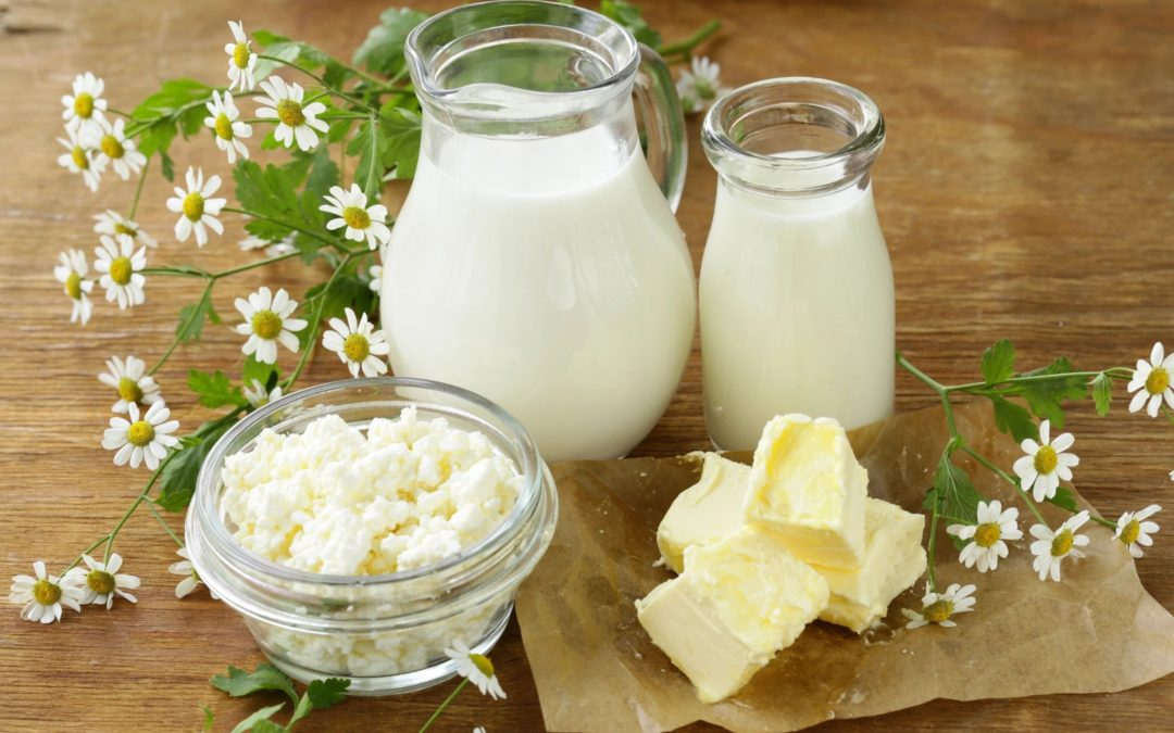 Dairy and Ayurveda