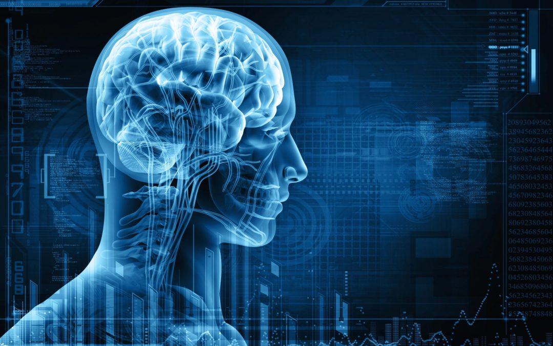 The Neuroscience of Meditation