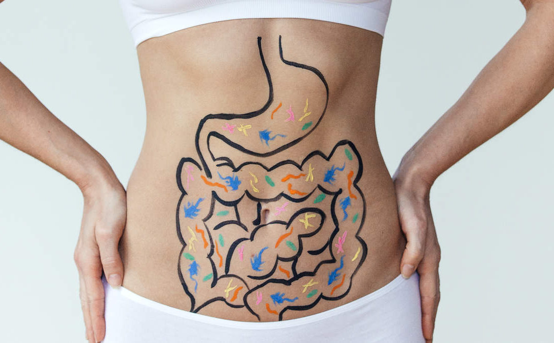 Ayurveda and Gut Health